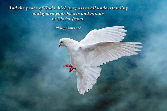 The Peace of God which surpasses all understanding . . . by Bonnie T.  Barry