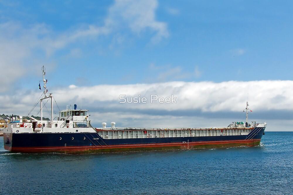 MV Shetland Trader ~ Teignmouth by Susie Peek