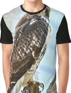 Red Tail Hawk Graphic T-Shirt
