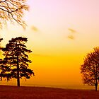 Surrey Sundown by andonsea