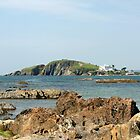 Burgh Island by Tony Steel