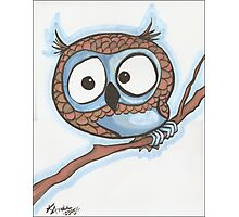 Blue Owl Photographic Print