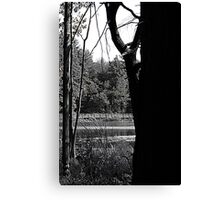 Walk of the day Canvas Print