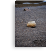 stone on a beach Canvas Print
