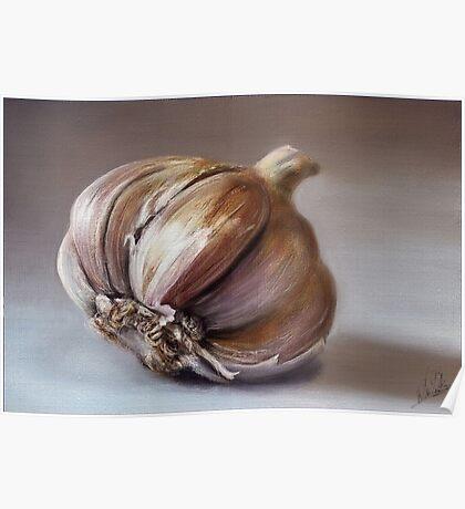 Classic still life garlic painting Poster