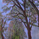 Sutter Trees by Shelly Cimoli