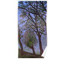 Sutter Trees Poster