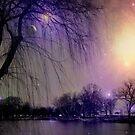 Fairy Dust Sprinkles © by Dawn M. Becker