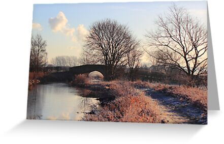 Touch of frost by John Dunbar