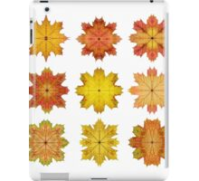 Autumn Maple Leaf Stars iPad Case/Skin