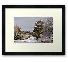 Holt Heath 1 Framed Print