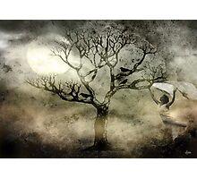 Moonlight Dance Photographic Print