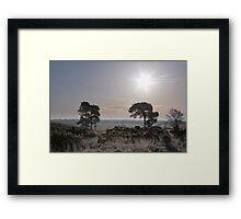 Holt Heath  12 Framed Print