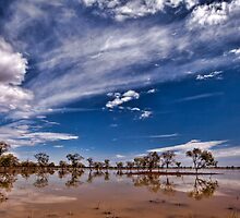 Outback Suprise - Wilcannia, NSW by Malcolm Katon