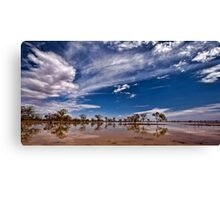 Outback Suprise - Wilcannia, NSW Canvas Print
