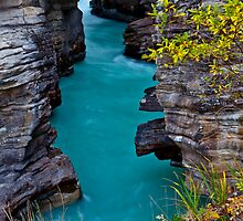 Athabasca Falls / Lower Canyon by Jim Stiles
