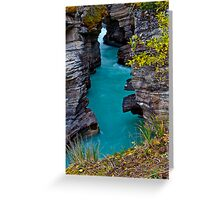 Athabasca Falls / Lower Canyon Greeting Card