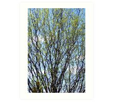 Spring Buds, Live, Love, Laugh and New Beginnings Art Print
