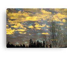 Issaquah Sunrise2 Metal Print