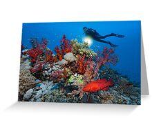 Reef Adventure Greeting Card