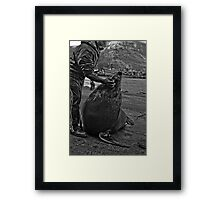 Andre and his Pet Seal II Framed Print