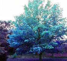 In A Blue Mood by Jane Neill-Hancock