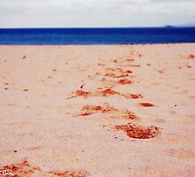 Take my hand & we'll walk along the sand. by Beth Mackelden