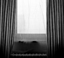 window by katta