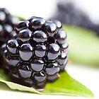 Blackberries  by Hege Nolan