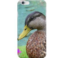 Handsome Duck by a Pond iPhone Case/Skin