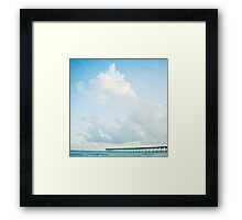 come fly with me. Framed Print