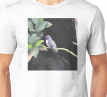 YOUNG WHITE EARED MALE COSTA'S ON AVOCADO TREE Unisex T-Shirt