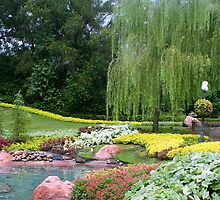 Lovely Garden with a Pond in Orlando Florida by anitahiltz
