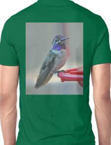 ADULT MALE COSTA'S ON THE PERCH Unisex T-Shirt
