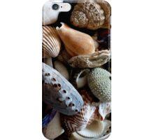 Seashells iPhone Case/Skin