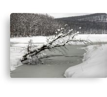 Silver Mine Lake In Winter Canvas Print