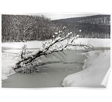 Silver Mine Lake In Winter Poster