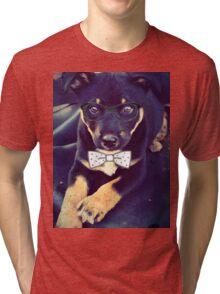 Smart Boy Tri-blend T-Shirt