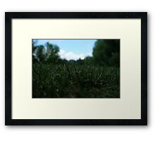 Green and Blue Framed Print