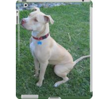 Young American Pit Bull Terrier iPad Case/Skin