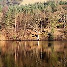 Winter Reflections - Ladybower by Jon Bradbury
