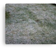 Snowy Saturday Canvas Print