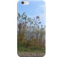 Above Lake Michigan iPhone Case/Skin