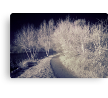 Charnwood Lake IR 2.0 Canvas Print