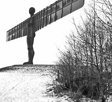 Angel of the North by MarkHume