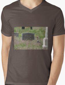 A Visitor Mens V-Neck T-Shirt