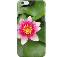 Nymphaeaceae iPhone Case/Skin