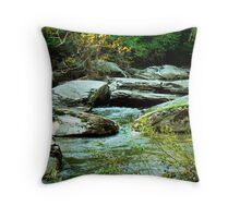 Night Encroaches Throw Pillow