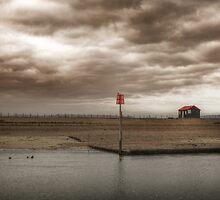 Birdwatch by Toby Pocock