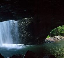 Natural Bridge, Springbrook National Park, Qld, Australia by Odille Esmonde-Morgan